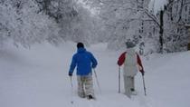 『スノーリゾート猫山』でスキー、スノボをお愉しみ下さい。