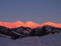 冬の朝。朝焼けが北アルプスの山に反射します。モルゲンロート