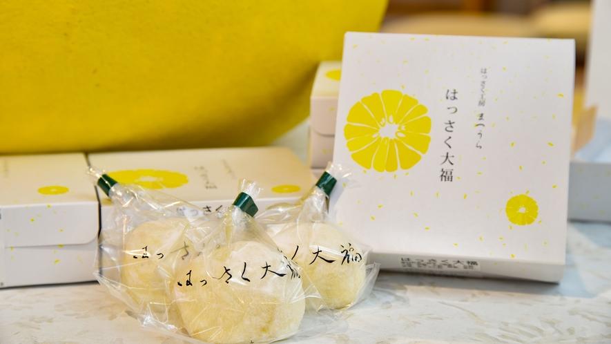*はっさく大福◆柑橘が有名なしまなみのはっさく大福をお土産にどうぞ