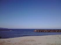 晴れた日の海岸は最高のお散歩コースに♪