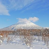 *【周辺】スキー場は当館から車で5分圏内!「羊蹄山」を眺めながらの滑走は格別です。