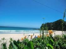 初夏の入田浜 青い海と青い空 真っ白な砂浜 最高に美しいビーチです