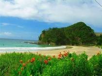 初夏の入田浜、もうすぐた~っくさんの人で賑わいます。