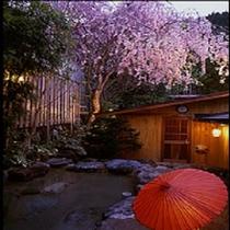 桜 露天風呂