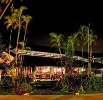 レストラン前ガーデン広場(夜)