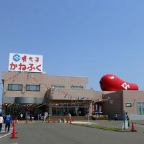 *周辺観光【かねふくめんたいパーク】無料で見学できる明太子工場。家族連れやカップルに人気♪