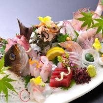 <別注>旬の地魚満載 造里盛り合わせ ※予約プランあり