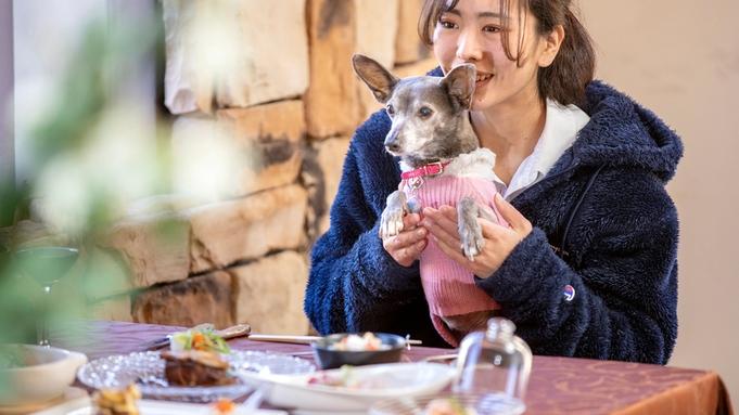 【お食事まとめ出し】食事も自分のペースで楽しむ!(2食付き・お部屋食)