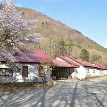 *外観/草花が芽吹く早春。当館の目の前にも立派な桜が。