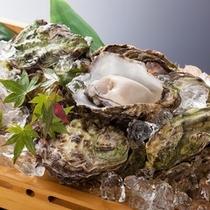 牡蠣のイメージ(当館では生食の提供はしておりません)