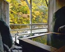 秋の檜木風呂
