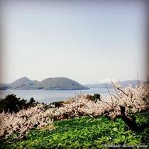 Lake Toya Spring 1