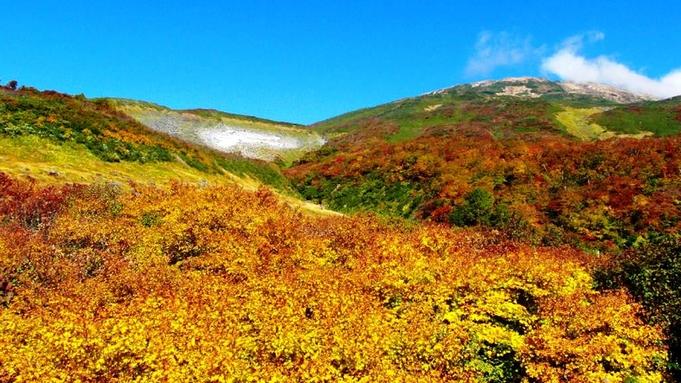 【秋冬旅セール】<地酒飲み比べ付>『四季旬彩』コース〜星空を眺める高原ステイ♪