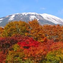 *荒木橋高台から望む鳥海山と紅葉