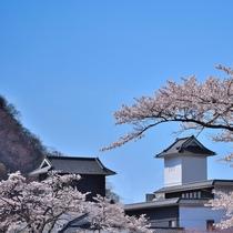 当館天守閣と桜