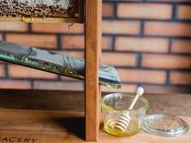 【朝食:8階ボンジュール】巣蜜から採取する国産の天然はちみつ