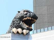 【ゴジラヘッド】大迫力のゴジラ!!!