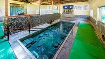 *【冷泉】7~9月限定!水着で入浴する江戸末期から続く混浴浴場です