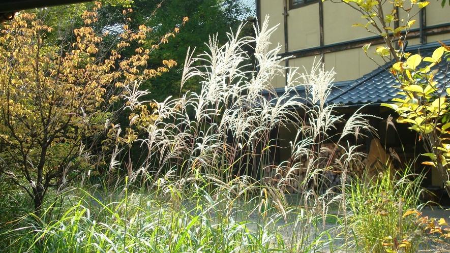 *【秋の様子】当館は紅葉が見られます。