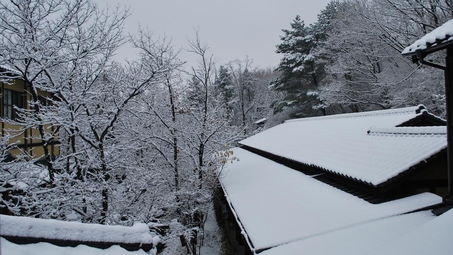 *【冬の様子】冬季はスタッドレスタイヤもしくはタイヤチェーンを持参してお越し下さい