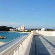 【屋上ドッグラン】白良浜を一望できます!