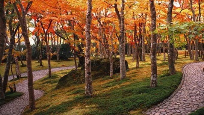 【チケット付/箱根美術館】四季折々の景観と芸術を楽しむ♪鑑賞券付き特典プラン(1泊2食付)