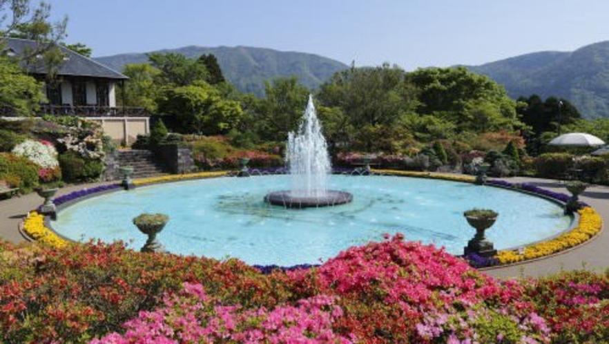 箱根・強羅公園