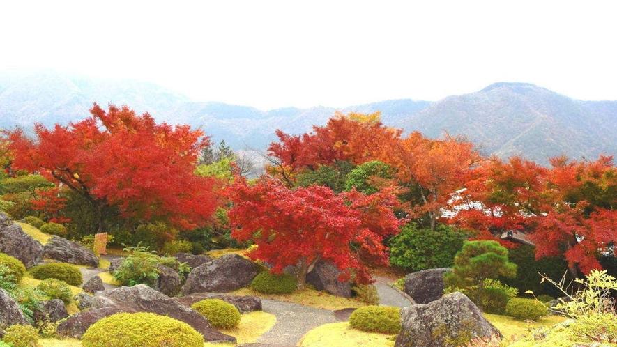 【箱根美術館】秋は芸術の秋とともに紅葉も楽しめる隠れスポットです☆