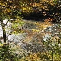 *吹割の滝/当館から車で約10分。新緑、紅葉など山化粧と透き通った水のコラボが美しい