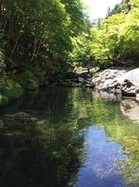 大血川渓流観光釣り場