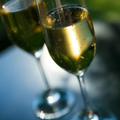 【ドン・ペリニヨン付】雄大な自然と美食を美酒と共に・・・最高の瞬間を楽しめるフルボトルワイン付き