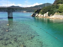 柏島①(橋の下) 海水浴で人気のスポット