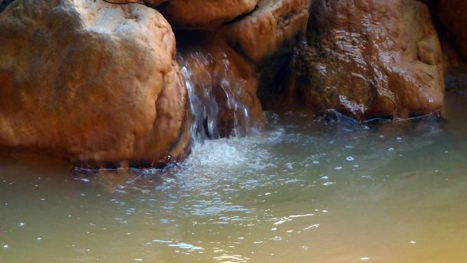 【竹|夕食のみ】翌日早めに出発の方にもおすすめ!人気の釜飯付夕食と源泉かけ流し温泉を愉しむ