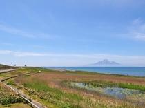 【利尻島】青い空に青い海!利尻島が映えます♪