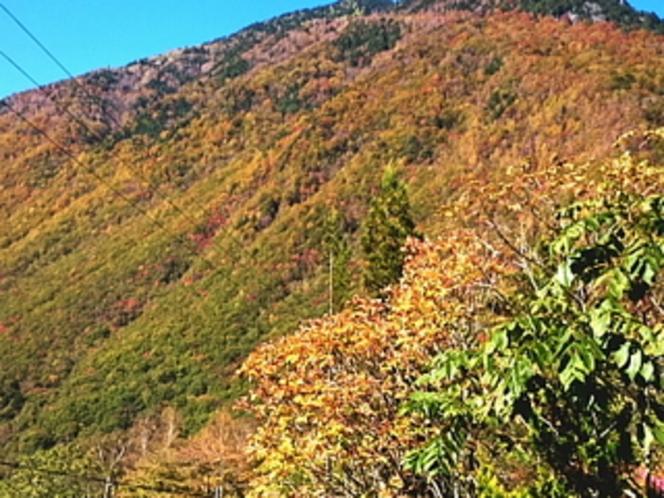 部屋からの近くの山々の紅葉