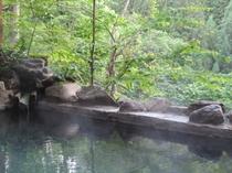 ダケカンバの湯(露天風呂)