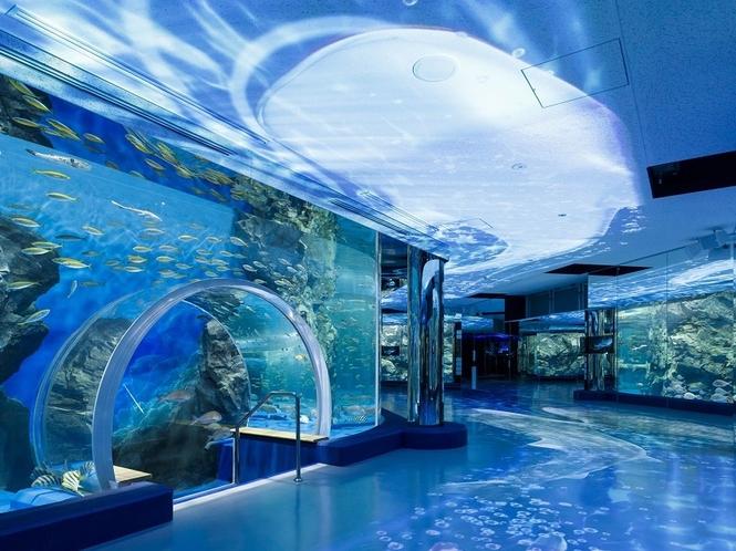 「のとじま水族館」