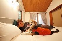 ペットとベッドもOK