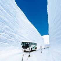 【立山黒部アルペンルート】4月15日に全面開通!ホテル森の風 立山はアクセス抜群です!