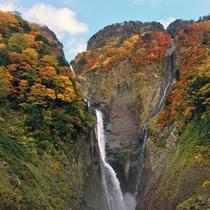 【秋の称名滝】