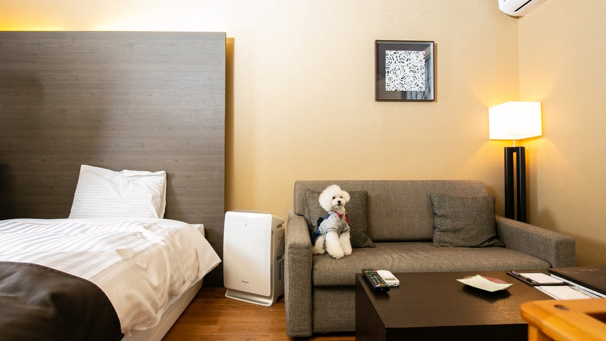 ペット同伴専用客室