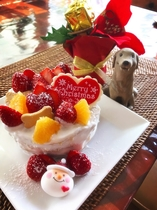ワンちゃん用ケーキ クリスマスバージョン
