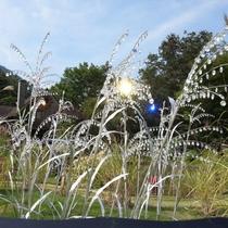 箱根ガラスの森美術館 クリスタルススキ(お車で20分)
