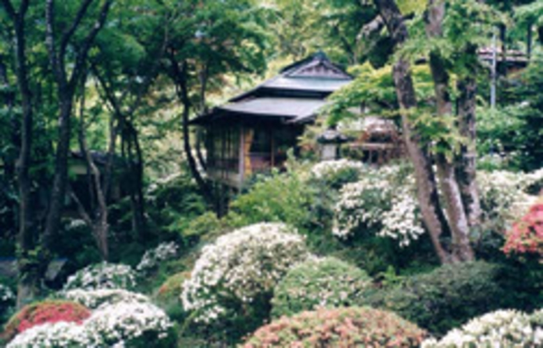 庭園016