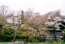 庭園015