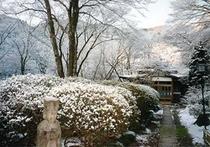 庭園010