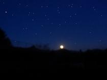 コテージからの夜空