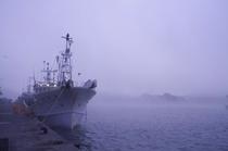 朝もやの津居山港