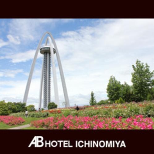観光スポット:138タワー(初夏のバラ)