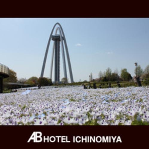 観光スポット:138タワー(春のネモフィラ)